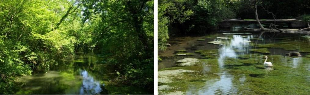 Sources et rivières phréatiques